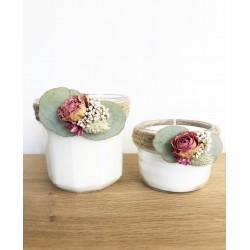 Rosa - Fleur de cerisier