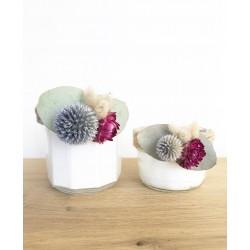 Romy - Fleur de coton
